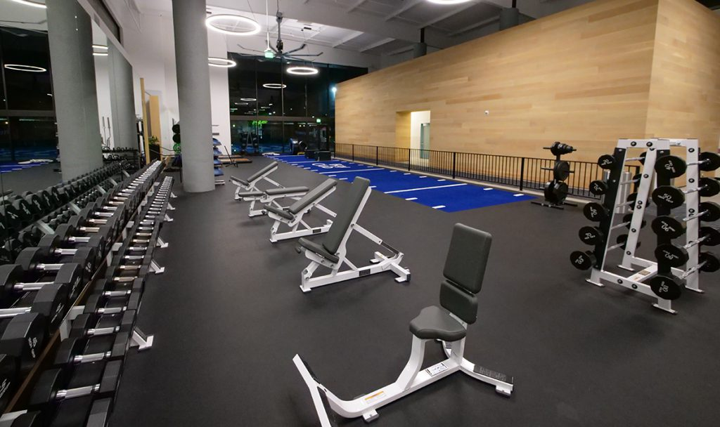 Fitness Atrium Free Weights Fitness Atrium Free Weights