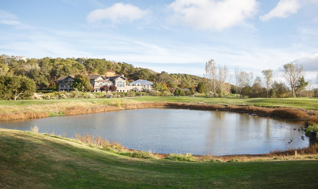 Golf Course Golf Course 4