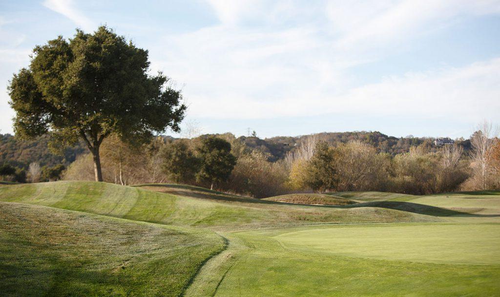 Golf Course Golf course 5