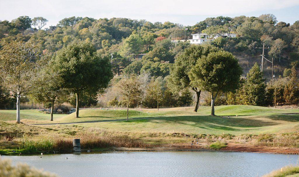 Golf Course Golf course 6